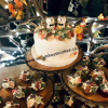 hedgehogweddingcake1.jpg